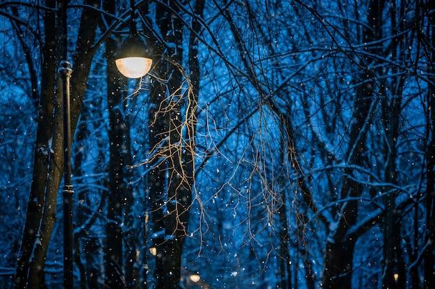 冬の夜の風景、輝く街灯の光の中で降る雪