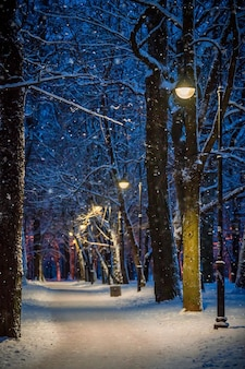 Winter night landscape, path under winter trees and shining street lights with falling snowflakes
