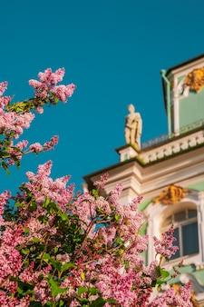 Летнее фото здания зимнего дворца среди цветущей сирени санкт-петербург