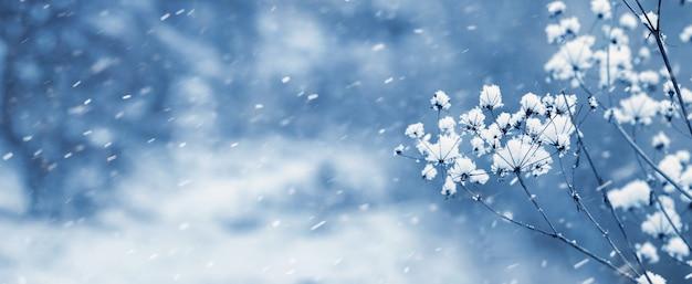 Зимняя панорама с заснеженной сухой веткой на фоне леса во время снегопада