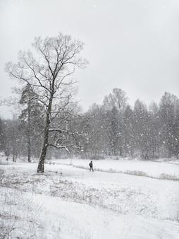 Зимний парк. красивый снежный пейзаж с фигурой человека, идущего в парке.