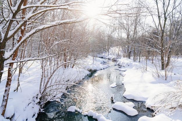 Зимний парк днем.