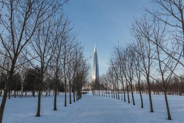 Зимний парк с тропинкой, ведущей через ряд деревьев к современной стеклянной башне.