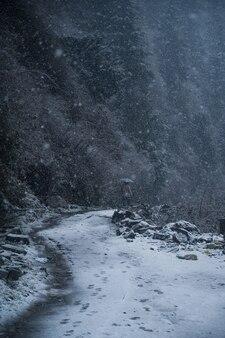 Sentiero invernale