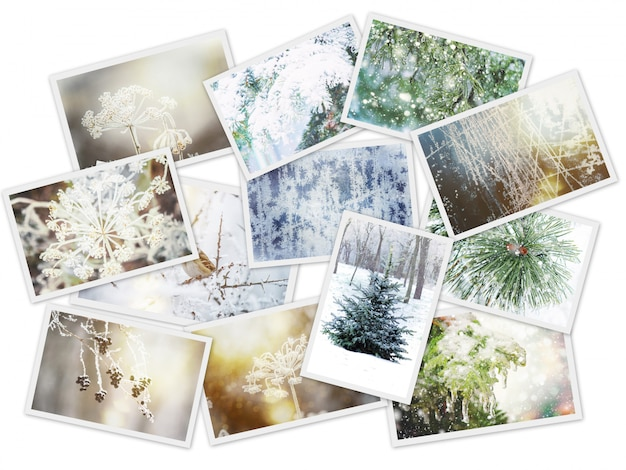 Winter photo collage. selective focus. nature winter