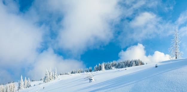 Зимний иней и снег покрыли ели на склоне горы на фоне голубого неба. два кадра сшивают изображение.