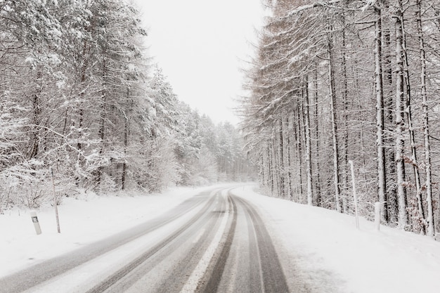 Winter road in clod forest