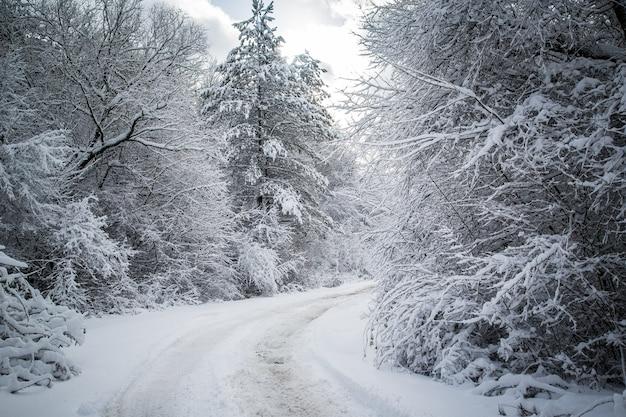 冬の山の風景を抜ける冬の道田舎道
