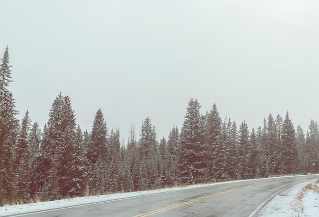 Зимняя дорога в городе
