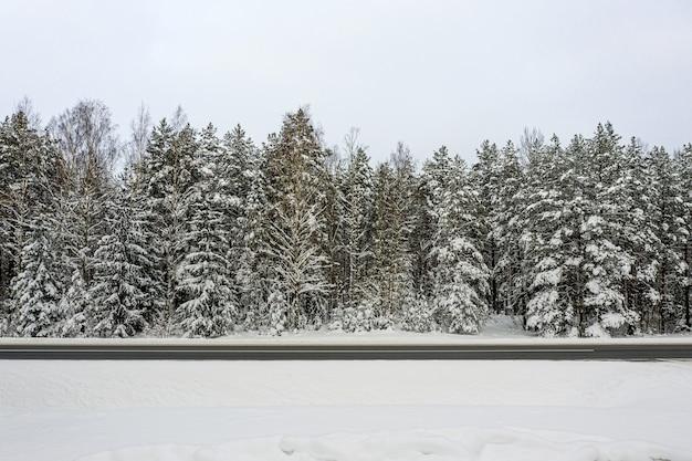 눈 덮힌 나무와 숲을 통해 겨울 도로