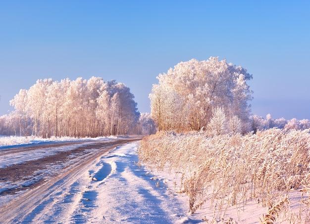冬の道。青い空を背景に白い霜で覆われた木の枝と乾燥した葦