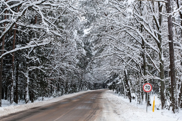 Winter road with snow through the forest . cold landscape