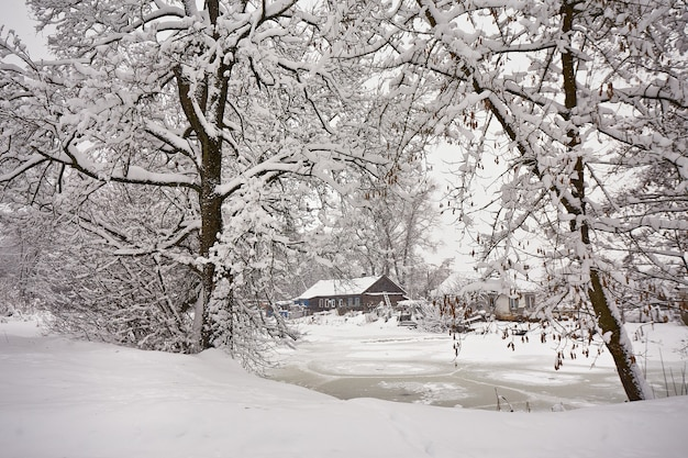 Winter rural scene. house near frozen lake. hut on january lakeside. trees on riverbank covered with snow. village wonderland after blizzard in belarus