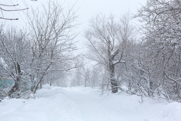 Winter, rural streets are covered with snow. snow blizzard