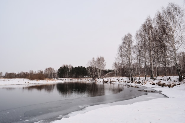 Winter scenery of river shore with naked trees and clean snow, nature concept