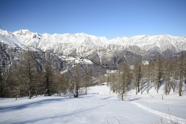 Winter scenic landscape in the italian alps with snow.