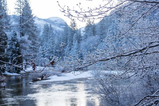 米国カリフォルニア州ヨセミテ国立公園の冬季
