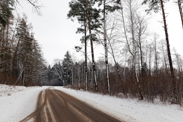 Winter season. small rural road covered with snow road along which grow forest trees. the  was taken close. on the roadway of dirt and vision car strip