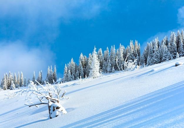Зимний заснеженный склон горы и ели на вершине холма