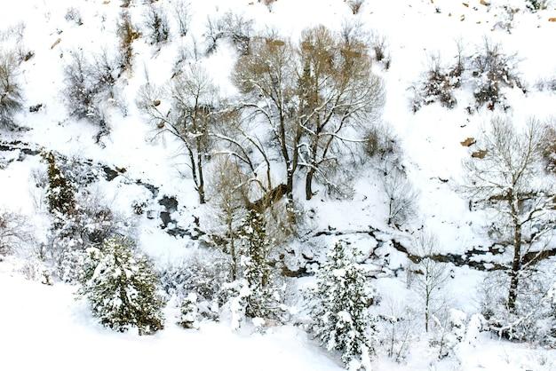 天山山脈、ウズベキスタンのベルダーセイリゾートエリアの高さからのベルダーセイ川の冬の雪の風景