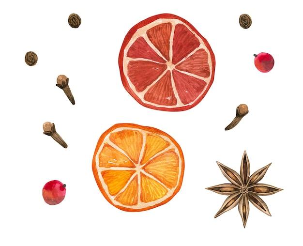 冬のスパイス。オレンジ、スターアニス、クローブ、コショウ。手描きの水彩イラスト。白い壁に隔離。