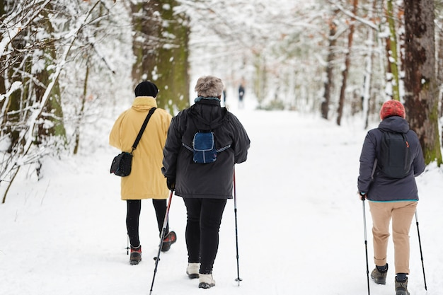 Winter sport nordic walking. women in park
