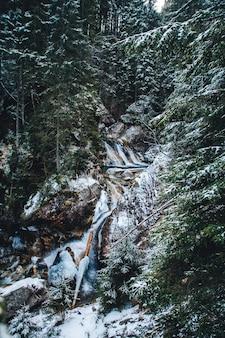 Зимой весна питает ручей водопадов зимой.