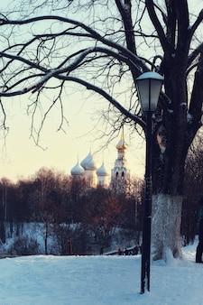 冬の街灯と木