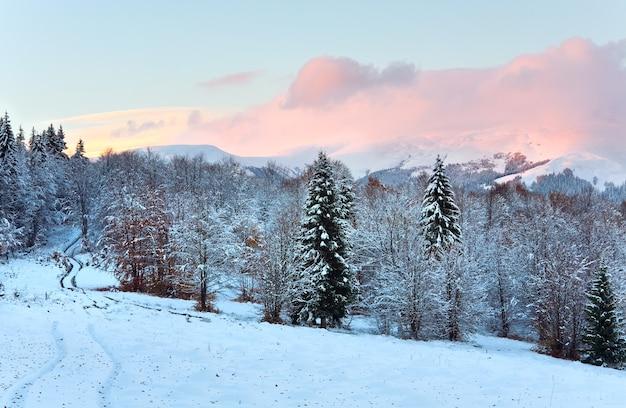 去年の紅葉のある森の中の汚れた道のある冬の日没の山の風景(カルパティア山脈、ウクライナ)