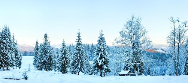 Зимний закат горный пейзаж с еловым лесом (карпаты, украина). составное изображение из четырех кадров.
