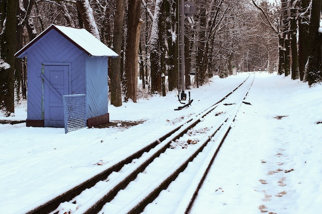 숲에서 겨울 기차