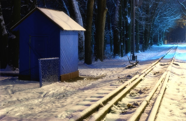 Winter train in the woods at night