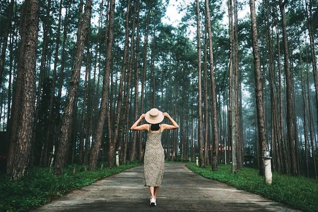 冬の旅行リラックス休暇の概念、ドイボルアン森林公園、チェンマイ、タイの松の木の庭を観光する若い幸せな旅行者アジアの女性