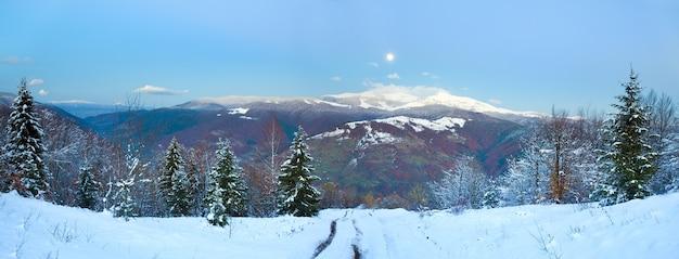 Зимние сумерки, горная грязная дорога, лес с прошлой осенней листвой и луна на сумеречном небе (карпаты, украина) два кадра сшивают изображение.