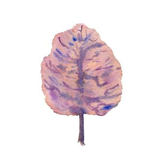 白い背景の上の冬の紫の木。手描きの水彩イラスト。