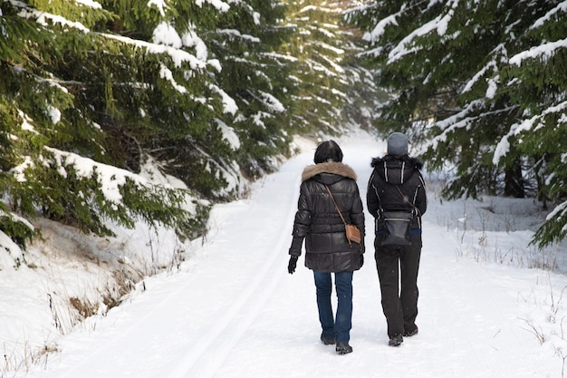 눈 덮인 숲 속의 겨울 산책