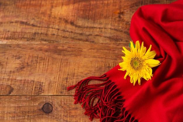 겨울, 따뜻한 분위기. 나무 배경에 빨간 스카프와 해바라기가 있는 프레임