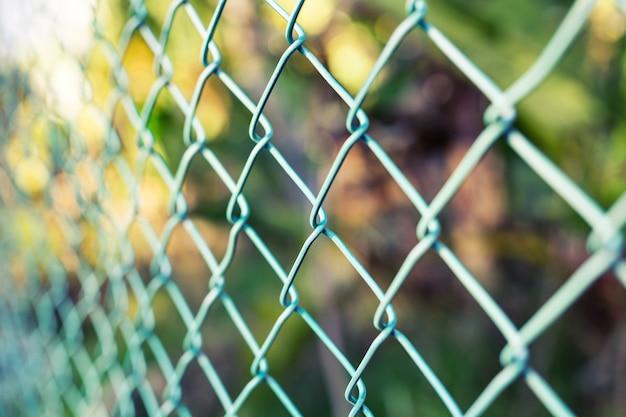 푸른 잔디와 철사 울타리입니다. 정원 녹색 색상 격자 울타리