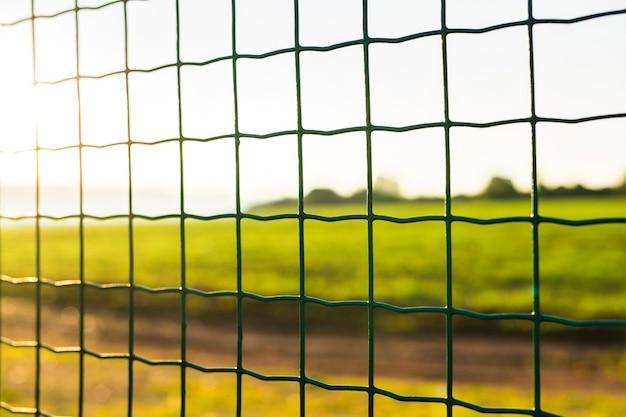 배경에 녹색 잔디와 와이어 울타리입니다. 정원 녹색 격자 울타리