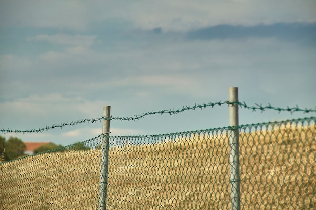 매크로 샷이 있는 철망과 철조망 배경에는 푸른 하늘이 있으며 질감으로 이상적이며 자유에 대한 열망이 있습니다.
