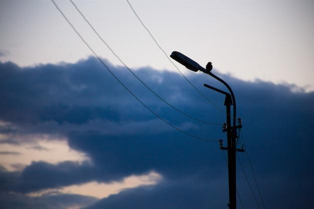 Провода для подачи электричества в город