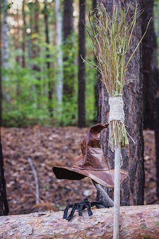 A witch's hat, a broomstick and a spider in the woods.