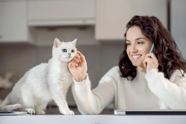 猫と。電話で話し、猫をなでるかわいい女性