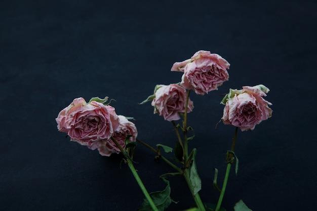 어두운 배경에 시든 장미 꽃봉오리가 있는 퇴색된 꽃 선택적 초점 복사 공간