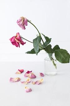 花びらが落ちたガラスの花瓶の枯れたバラ