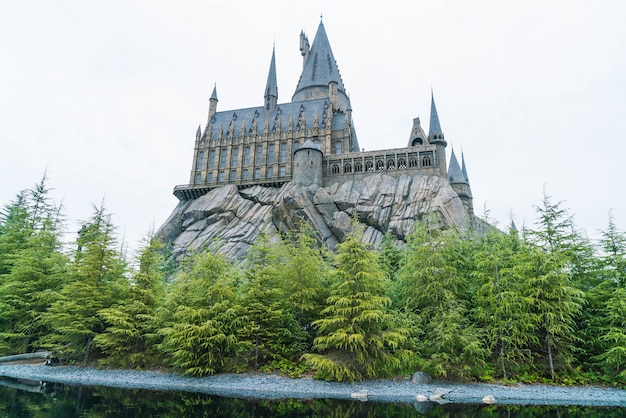 The wizard world of harry potter
