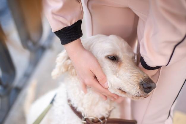 犬の散歩をしている40歳の女性