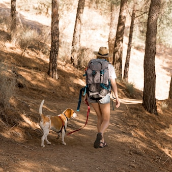 Женщина и ее собака гуляют в лесу сзади выстрел