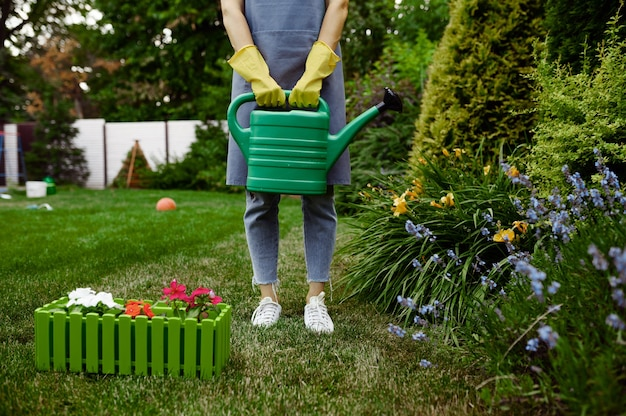 Woman in apron and gloves holds watering can in the garden. female gardener takes care of plants outdoor, gardening hobby, florist lifestyle and leisure
