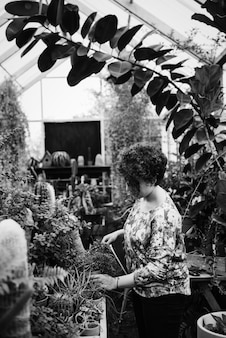 温室に花を並べる女性